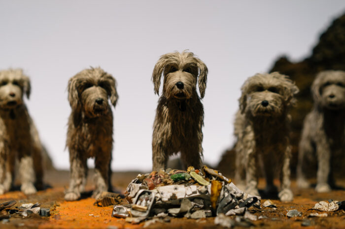 Korea Wants to Classify Dogs as Livestock